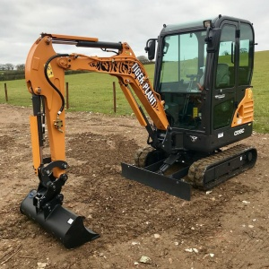 Tiger Plant | Case CX18 for hire